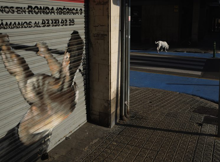 moncat #canpubphoto #capturestreets #lensculturestreets #streetphotographers #streetphotographycollective #fotografiacallejera #fotografiadecarrer #streetphotographerscommunity #streetphotographyworldwide